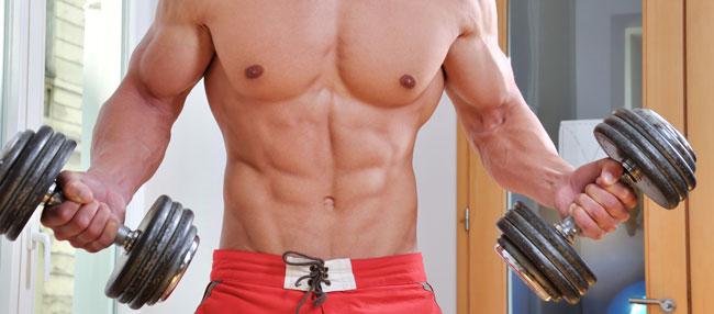 Quels sont les liens entre la testostérone (l'hormone masculine) et la musculation?